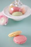 French macaron, the famous pastry Royalty Free Stock Image