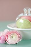 French macaron, the famous pastry Stock Photo
