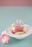 French macaron, the famous pastry Royalty Free Stock Photography