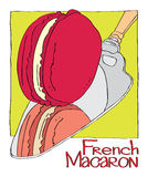 French Macaron Stock Images