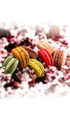 French macarons and cherry blossom branch. French macarons arranged with cherry blossom flowers branch Stock Photo