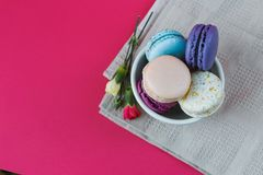 French macarons in cup with flowers. Sweet colorful bisquits. Top view. Stock Image