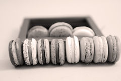 French macarons in a gift box Royalty Free Stock Photos