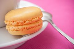 french macarons pastry and cup of coffee on pink back royalty free stock image