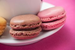 french macarons pastry and cup of coffeee stock image