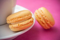 french macarons pastry on pink background stock image