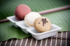 Free French Macaroons  Royalty Free Stock Photography - 13115977
