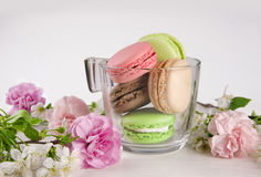 French macaroons in cup. Turquoise, chocolate and green macaroons with spring flowers Royalty Free Stock Image