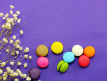 French macaroons with dried flower and empty notebook page background Royalty Free Stock Photography