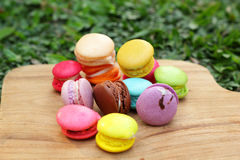 French macaroons multi colorful is delicious Stock Images