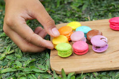 French macaroons multi colorful is delicious.  Royalty Free Stock Photo
