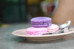 French macaroons multi colorful is delicious.  Stock Photography