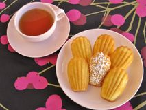 French madeleines and tea in pink vintage china on black and magenta cherry-design tablecloth. Classic French madeleines and cup of tea in retro china on modern Stock Photos