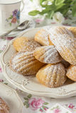French madeleines. At tea time Royalty Free Stock Images