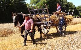 Free French Man And Horse And Hay Wagon Royalty Free Stock Images - 102236829
