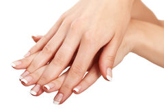 French manicure Stock Image