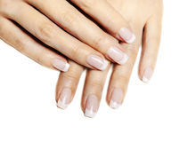 French Manicure. Beautiful female hands with french manicure isolated over white royalty free stock photos