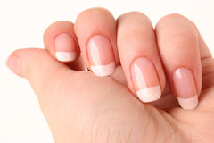 French manicure. Womans hand with french manicure stock image