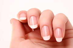 French manicure. Woman's hand with French manicure royalty free stock images