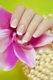 French manicure. French manicure on a green background with an Orchid and pearls stock photography