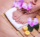 French Manicure on Beautiful Female Feet and Hands. With pink orchid flowers on bamboo mat. Nail care. Pedicure. Spa Salon stock photos