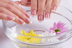 French manicure close up. Stock Photo