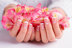 French manicure closeup. Delicate freesia in female hands royalty free stock image