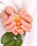 French manicure closeup Stock Photos