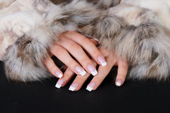 French manicure and furs. Beautiful woman hands with french manicure in furs close-up stock image