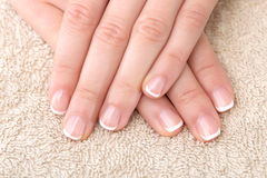 French Manicure Stock Images