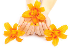 French manicure with orange lily. spa Stock Image