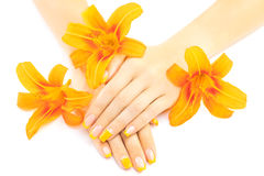French manicure with orange lily. spa Royalty Free Stock Images