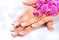 French manicure with orchids. French manicure with purple orchids royalty free stock image