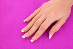French manicure on pink Royalty Free Stock Photography