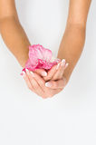 French manicure and pink flower Stock Images