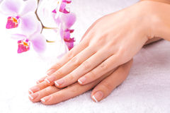 French manicure with pink orchid on the white Stock Photo