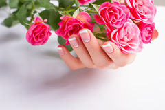 French manicure with pink roses. Beautiful gentle moon french manicure with pink roses on a white background royalty free stock photography
