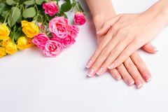 French manicure with pink and yellow roses on a white background. Beautiful well-groomed female hands. French manicure with pink and yellow roses on a white stock image