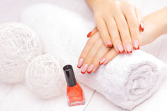 French manicure with red poppy flower Stock Images