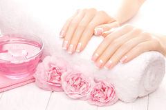 French manicure with rose flowers. spa Royalty Free Stock Images