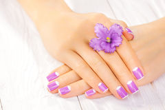 French manicure with violet flowers. spa Royalty Free Stock Images