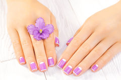 French manicure with violet flowers. spa Stock Photos