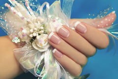 French manicure. Stock Photo