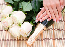 French manicure, white roses and champagne stock photography