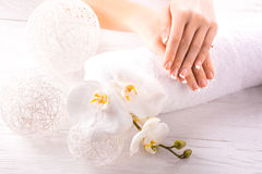 French manicure and wnite orchid flower Royalty Free Stock Photo