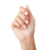 French manicured hand Stock Photography