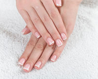 French manicured hand Royalty Free Stock Photography
