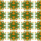 French marigold Royalty Free Stock Image