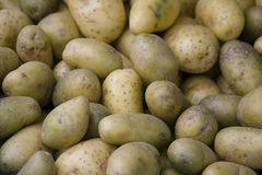 French market potatoes Royalty Free Stock Photos