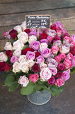 French Market Roses in Metal Bucket Royalty Free Stock Photography